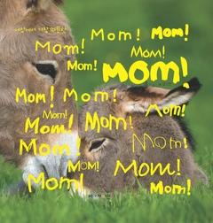 세상에서 가장 따뜻한 Mom!